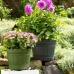 Оконный цветочный горшок EMSA COUNTRY круглый 30х26 см (Зеленый)