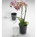 Вазон для орхидеи стеклянный белый 135 на 125 мм