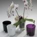 Вазон для орхидеи стеклянный бежевый 135 на 125 мм